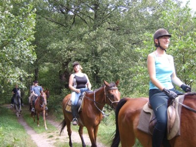 Konie & taniec 2007